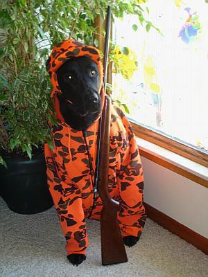 Halloween Craft Ideas Year Olds on Is Dressed As A Hunter He Loves To Go Hunting With Us In The Woods