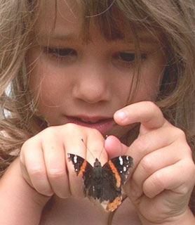 Butterfly and Little Girl